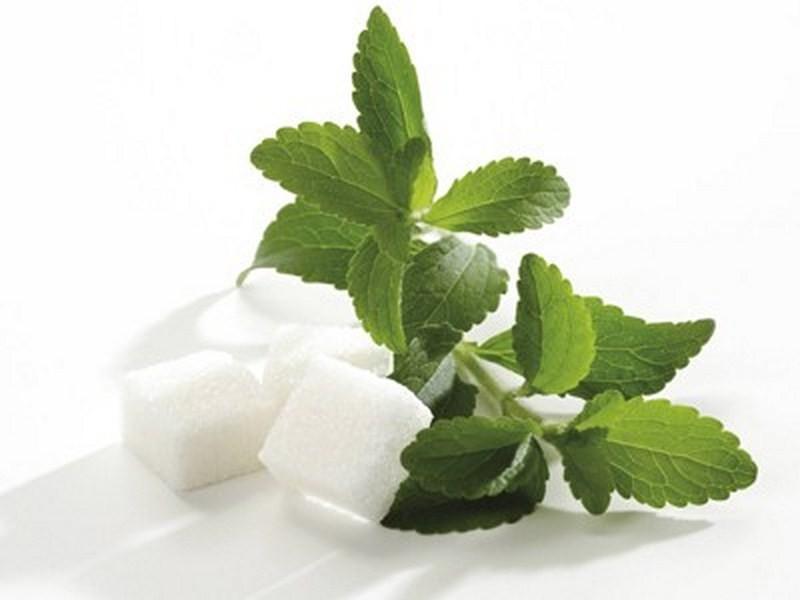 Cахарозаменители при сахарном диабете: вред и польза