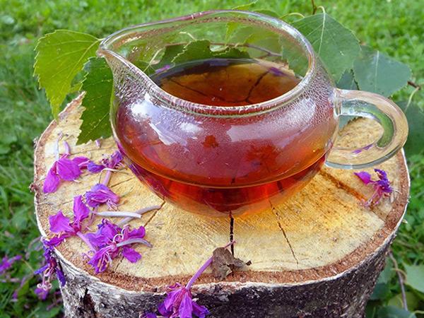 иван чай для похудения отзывы форум