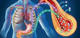 Какие особенности неинсулинозависимого сахарного диабета